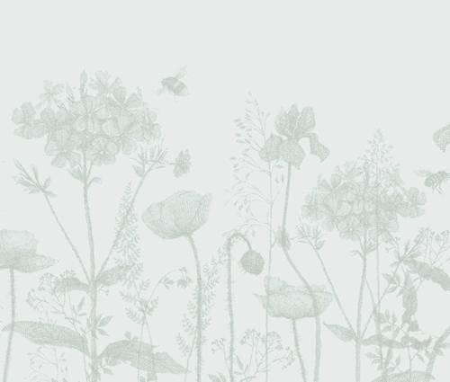 Produktbild Corydalis Hybride (elata x flexuosa) 'Spinners' - Blauer Lerchensporn