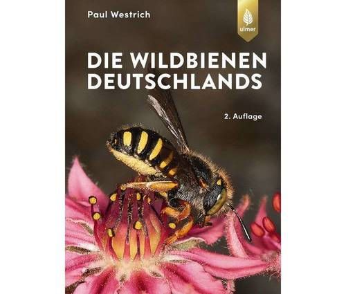 Produktbild Die Wildbienen Deutschlands