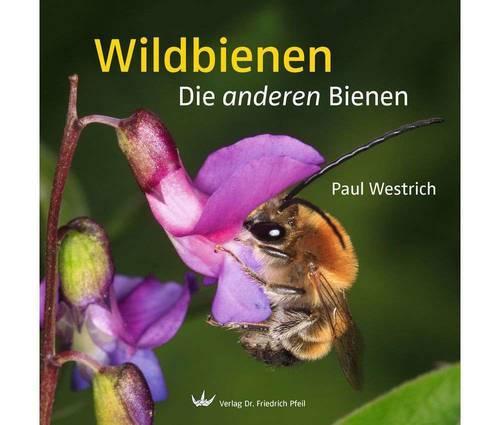 Produktbild Wildbienen - Die anderen Bienen