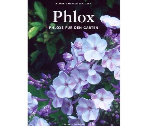 Produktbild Phlox - Phloxe für den Garten